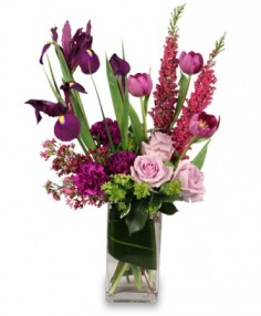 VIOLET POTPOURRI Arrangement in Knoxville, TN | FOUNTAIN CITY FLORIST & GREENHOUSE