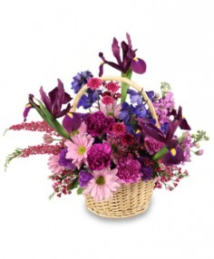 GARDEN OF GRATITUDE Basket of Flowers in Hillsboro, OR | FLOWERS BY BURKHARDT'S