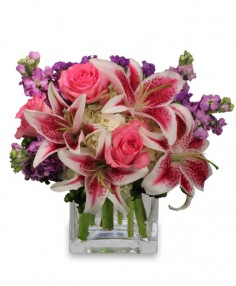 MORE THAN WORDS... Flower Arrangement in Las Vegas, NV | AN OCTOPUS'S GARDEN