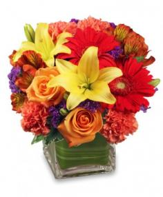 BRIGHT BEFORE YOUR EYES Flower Arrangement in Birmingham, AL | ANN'S BALLOONS & FLOWERS