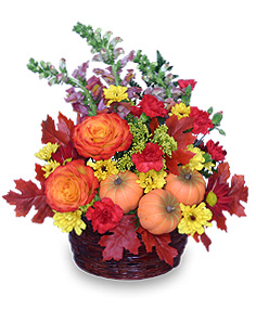 PUMPKIN PLEASURES Basket of Flowers in Bath, NY | VAN SCOTER FLORISTS