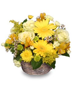 SUNNY FLOWER PATCH in a Basket in Cut Bank, MT | ROSE PETAL FLORAL & GIFTS
