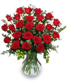 24 RADIANT ROSES Red Roses Arrangement in Marysville, WA | CUPID'S FLORAL