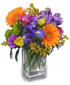CELEBRATE THE DAY Fresh Flowers in Wheatfield, IN | STEMS N' SUCH