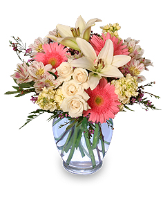 WELCOME BABY GIRL Flower Arrangement in Rochester, NH | LADYBUG FLOWER SHOP, INC.