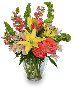 CAREFREE SPIRIT Flower Arrangement in Bellingham, WA | M & M FLORAL & GIFTS