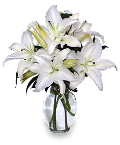 CASA BLANCA LILIES Arrangement in Ottawa, ON | MILLE FIORE FLORAL