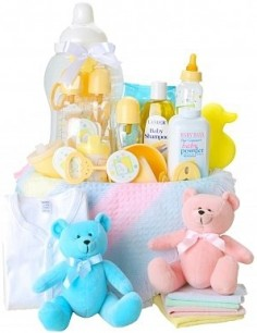 BABY BASICS FOR BOY OR GIRL GIFT BASKET in Bethesda, MD | ARIEL FLORIST & GIFT BASKETS