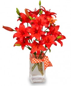 BLAZING ORANGE LILIES Arrangement in Baton Rouge, LA | TREY MARINO'S CENTRAL FLORIST & GIFTS