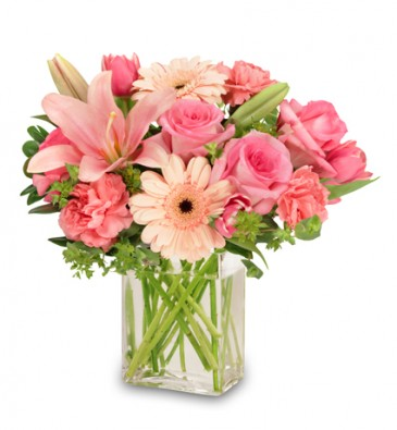 pink flowers for a special someone