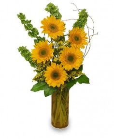 Flower Bouquets on Bouquet  For You To Present To Your Special Graduate At The Ceremony