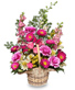 FRIENDSHIP BLOOMS Basket of Flowers