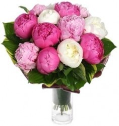 MIX PEONIES BOUQUET in Bethesda, MD | ARIEL FLORIST & GIFT BASKETS