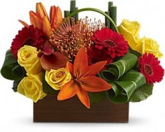 Modern  Flower Centerpiece Las Vegas Flower Centerpiece in Las Vegas, NV | AN OCTOPUS'S GARDEN