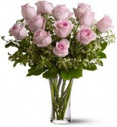 **MOTHER'S DAY SPECIAL** Dozen Pink Roses in Largo, FL | ROSE GARDEN FLOWERS & GIFTS INC.