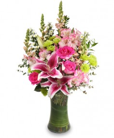 STARSTRUCK Floral Arrangement in Burton, MI | BENTLEY FLORIST INC.