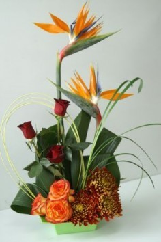 Fall Tropics Modern Tropical Arrangement in Edmonton, AB | JANICE'S GROWER DIRECT